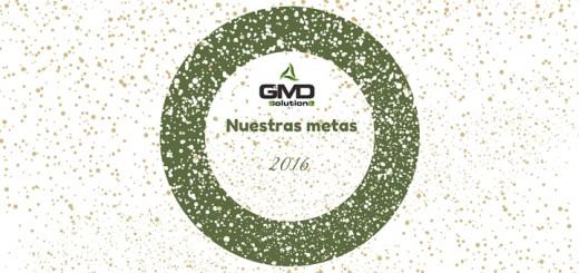 GDM Solutions: Nuestras metas 2016